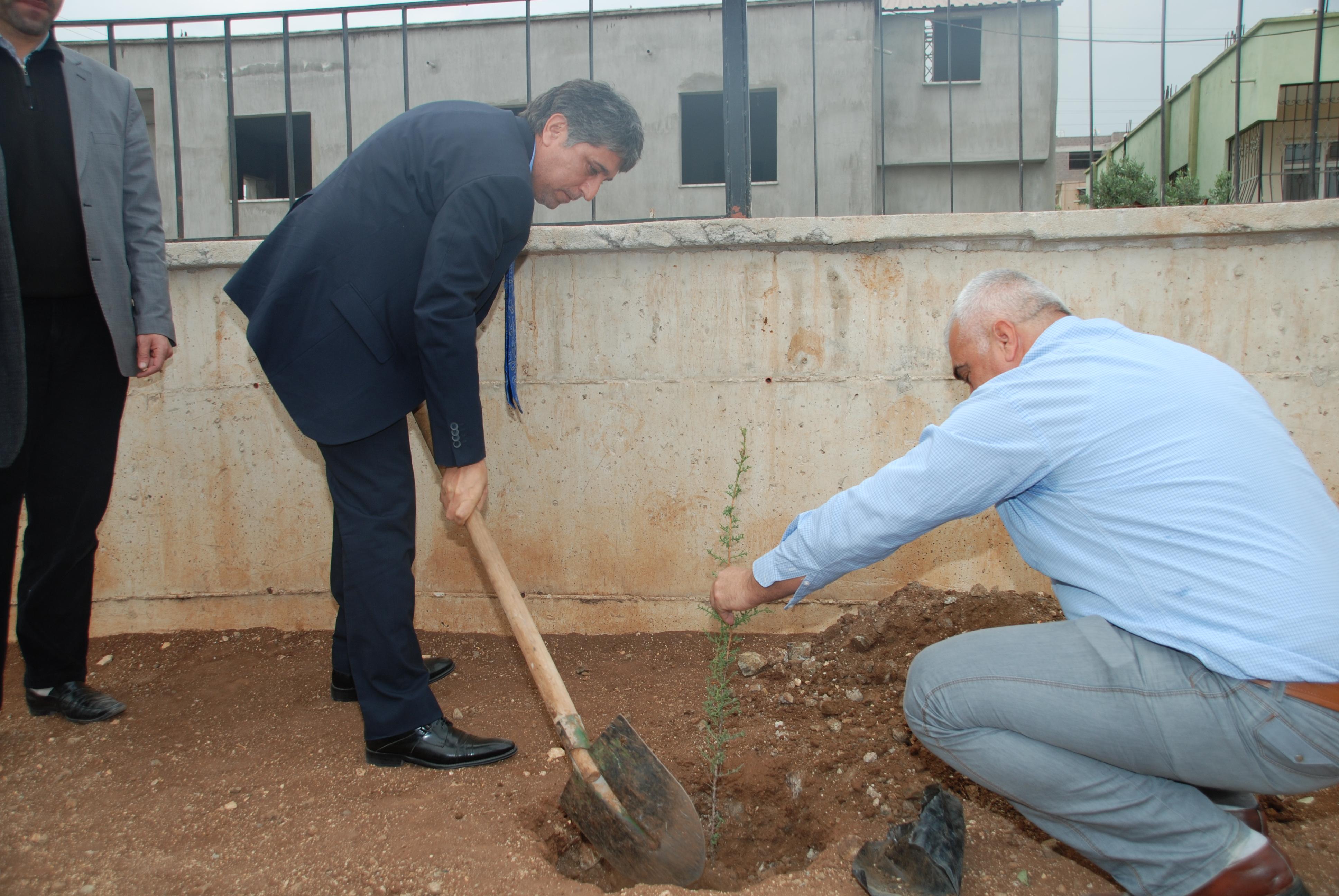 Cemil Meriç Ortaokulunda Ağaç Dikme Projesi