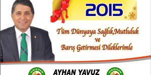 Yeni Yıl 2015